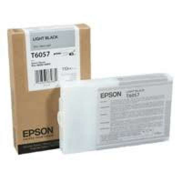 Epson Light Black Ink Cartridge 110ml