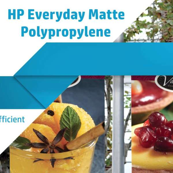 HP Everyday Matt Polyproplene 610mm x 30.5m (2 x rolls per box)