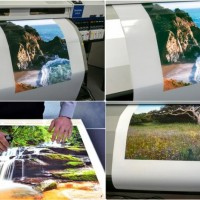 783 Backlit Polyester Matte Film 290gsm 1371mm x 30m